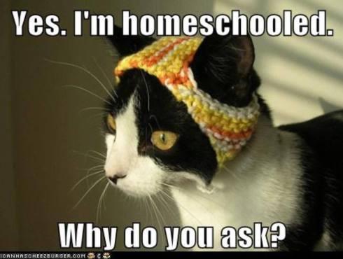 homeschool7